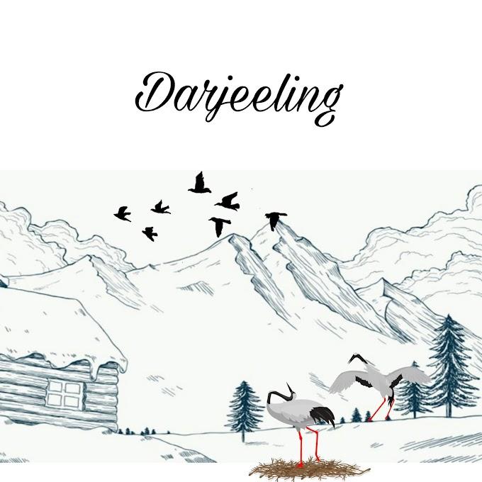 Best places to visit in Darjeeling (2019)