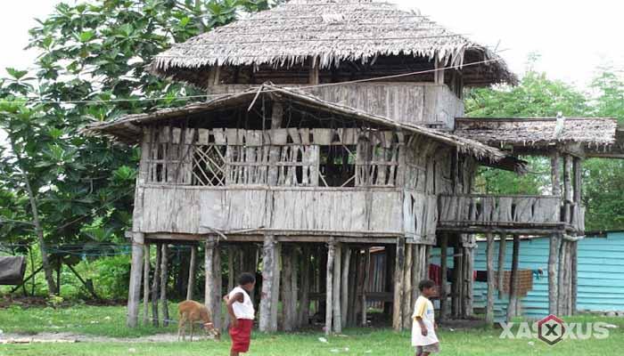 Gambar rumah adat Indonesia - Rumah adat Teluk Cendrawasih atau Rumah Lgkojei