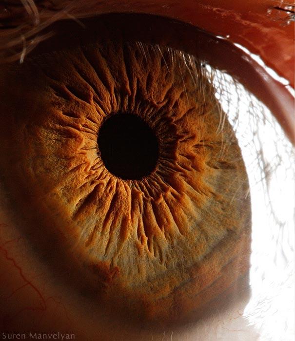 eye-macro-photo-8