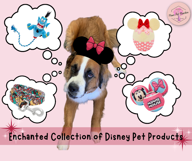 Disney Collection at Chewy