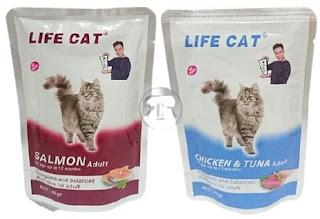 10 Rekomendasi Makanan Kucing yang Bagus