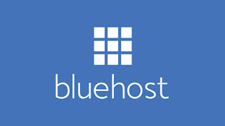 If you browse the internet you will find positive Bluehost Reviews everywhere. This US based hosting provider offers a wide range of hosting products, from shared and WordPress hosting to website builder tools. Even WordPress recommends Bluehost, so this is a great choice if you are ready to build a website using wordpress. Their cheapest shared hosting plan for a single domain costs very little. Bluehost offers various hosting packages including shared hosting, VPS hosting, WordPress managed web-hosting and dedicated hosting.