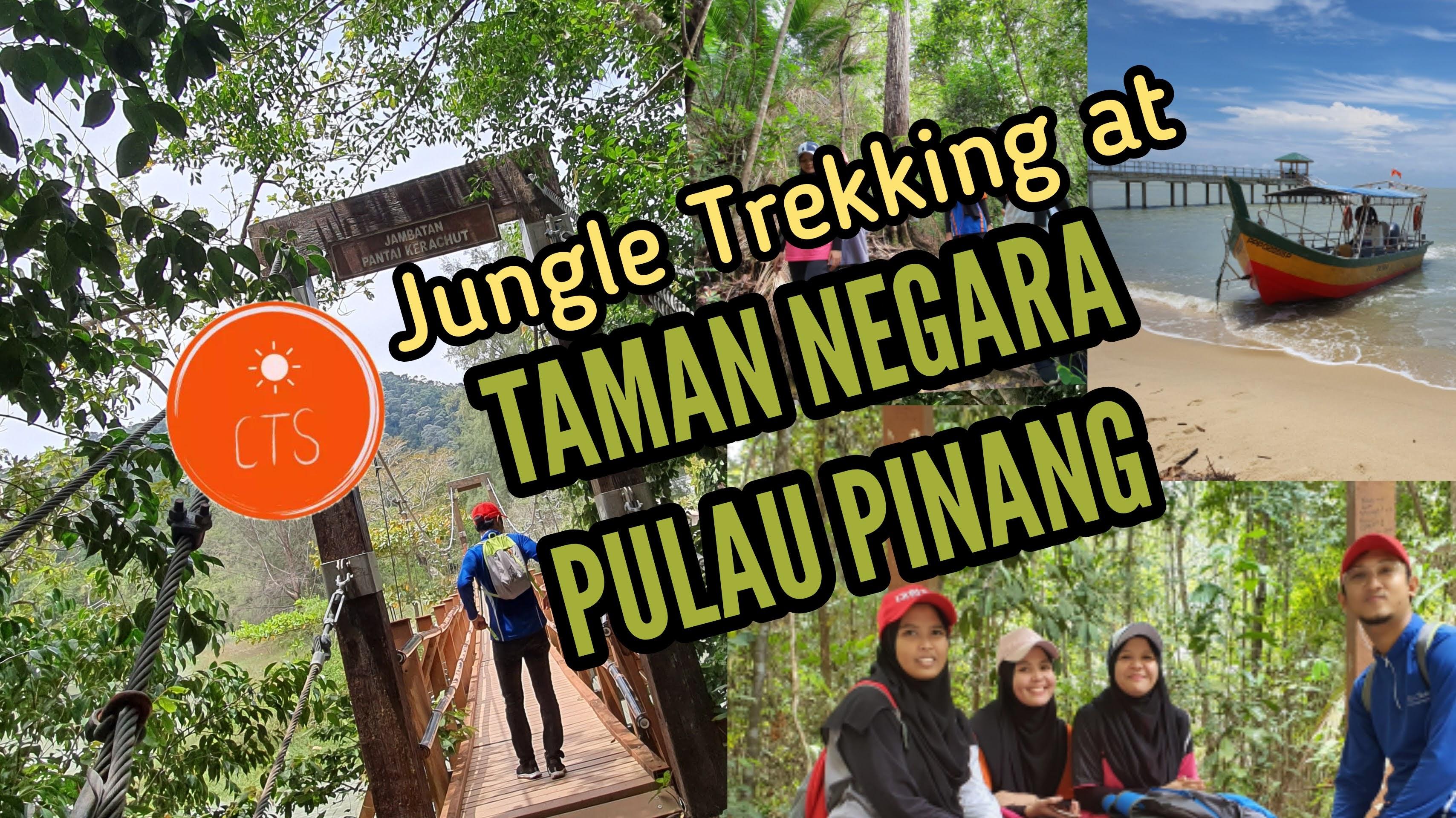 Pengalaman Jungle Trekking di Taman Negara Pulau Pinang @ Teluk Bahang