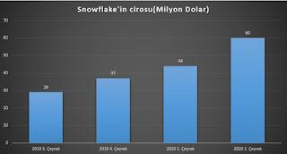 Snowflake şirketi