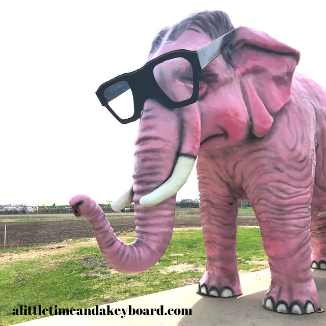 Fabulous sunglasses on Pinkie the Elephant a roadside attraction near Madison, Wisconsin.