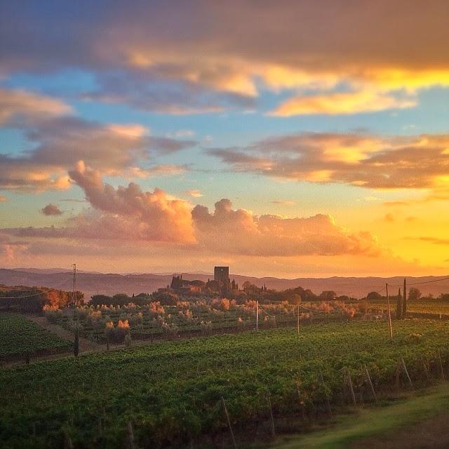 Sunset behind Castello di Argiano (photo by Cosimo Sesti)