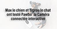 Max le chien et Tigrou le chat ont testé Pawbo® la Caméra connectée interactive