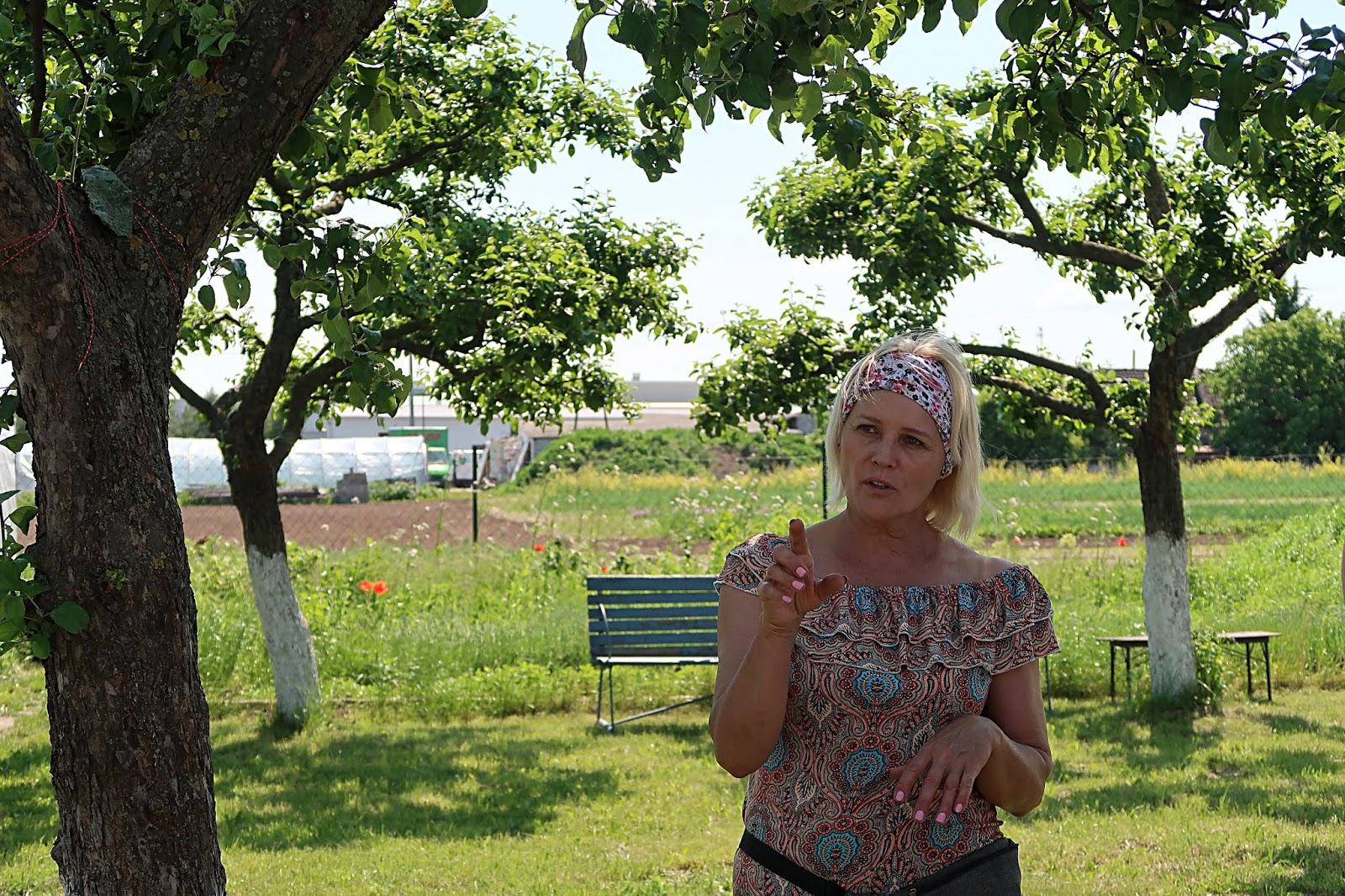 Ogród Zofii Lawendy