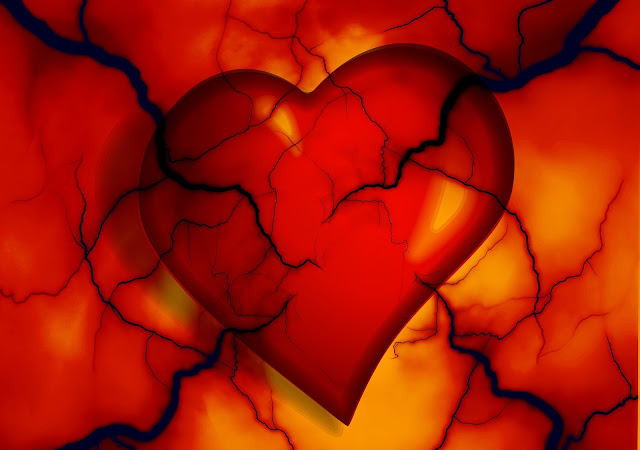 Learn More About Angina, Arrhythmia, And Atherosclerosis Heart Diseases