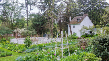 Un año en Brandywine Cottage, el jardín de David Culp