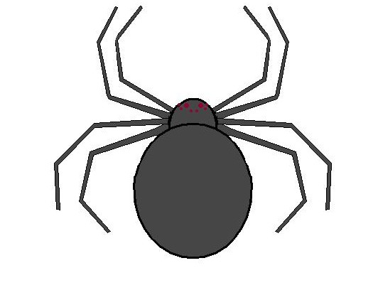 The Daily Entomologist: Halloween Spiders