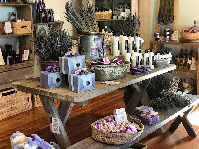 Farm Store at Pelindaba Lavender Open for Season