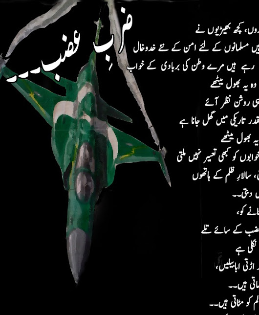 ZARB-E-AZB .... PAGAL The Poet