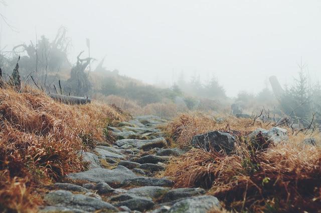 Caminho com Pedras