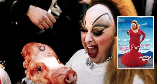 filmes perturbadores, filmes chocantes, filmes macabros, filmes bizarros, pink flamingos