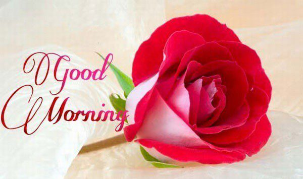 Wish Good morning for sister