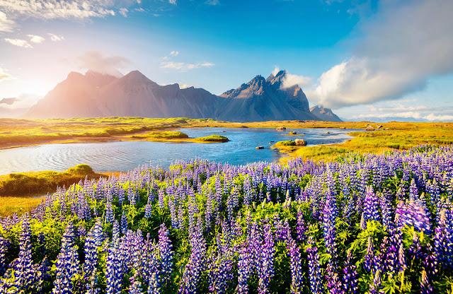 Thác nước là một trong các điểm tham quan dễ nhận biết nhất ở Iceland. Theo thống kê, đảo quốc này có đến 10.000 dòng thác rải rác khắp nơi và mỗi năm đều có những thác mới hình thành từ băng tan chảy. Bộ sưu tập thác nước ở Iceland có thể cạnh tranh với bất kỳ quốc gia nào khác về sức mạnh và vẻ đẹp hoang sơ.