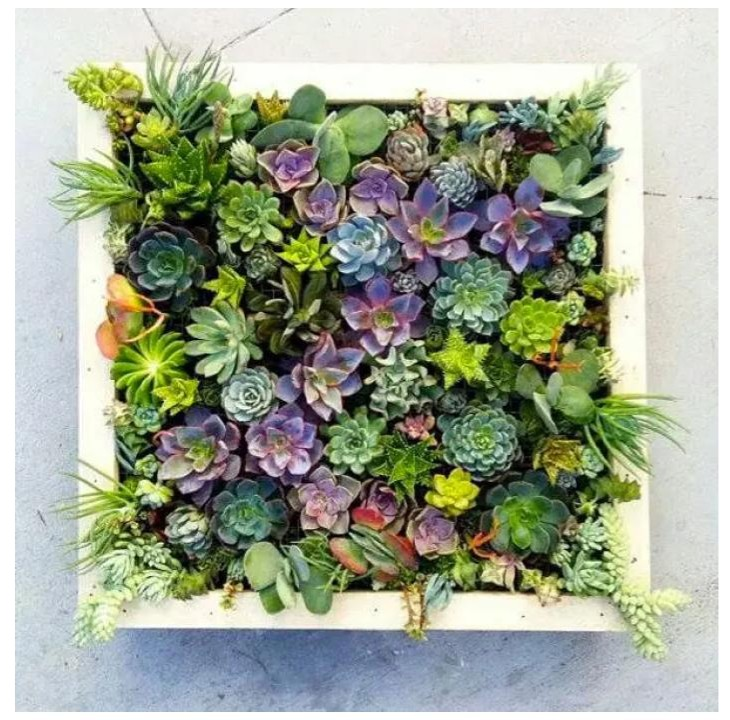 DIY Succulent Wall Planter | Its Handmade Blog