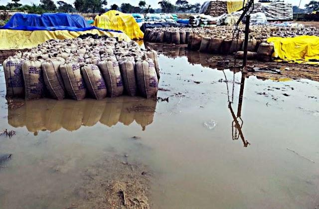 मुख्यमंत्री ने दिए निर्देश : वर्षा ऋतु के पहले होगा समितियों से धान का उठाव ??