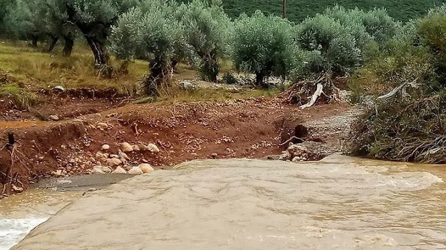Μια γυναίκα νεκρή και δύο αγνοούμενοι Θεσσαλία από τη κακοκαιρία - Εκατοντάδες οι διασώσεις από την Πυροσβεστική