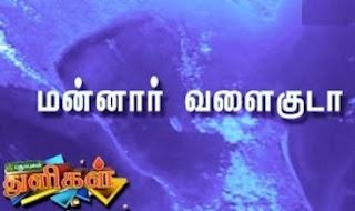 Puthuyugam Thuligal | 23-03-2017 Puthuyugam Tv