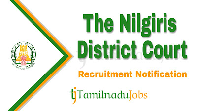 Nilgiris District Court Recruitment notification 2019, govt jobs for 10th pass, govt jobs for 8th pass, govt jobs in tamil nadu,