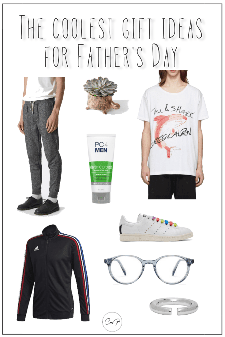 pinterest graphic for the coolest gift ideas for dad