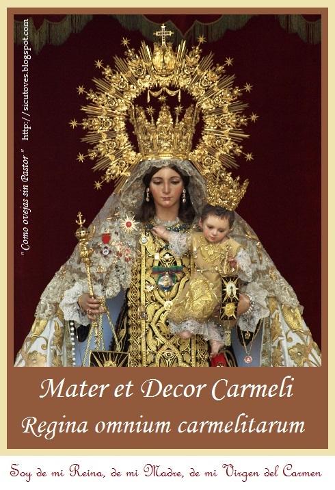 Como Ovejas Sin Pastor Mater Et Decor Carmeli