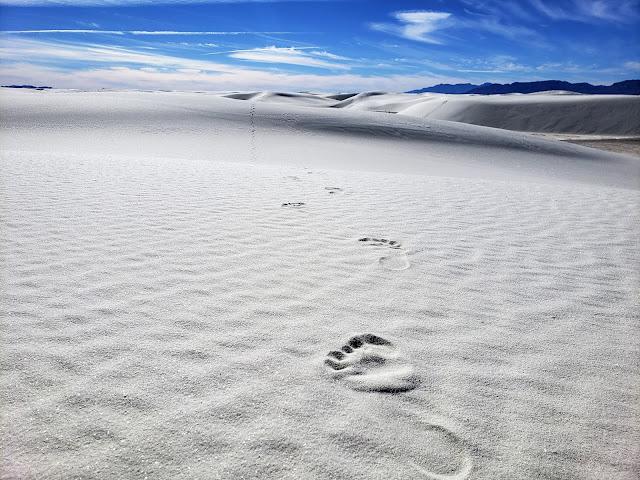 fottsteps in sand white sands national park new mexico