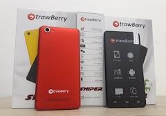 Flash Firmware Strawberry ST7701 GRATIS