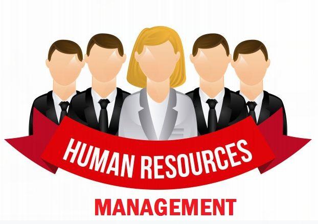 Apa Itu Manajemen Sumber Daya Manusia?