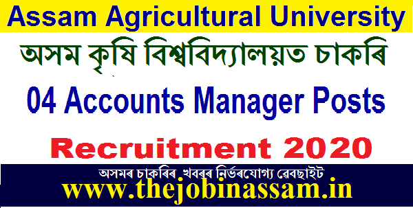 AAU Recruitment 2020: Apply For 4 Accounts Manager Posts