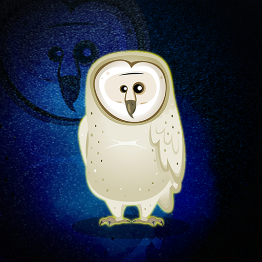 The White Owl Rescue Walk…