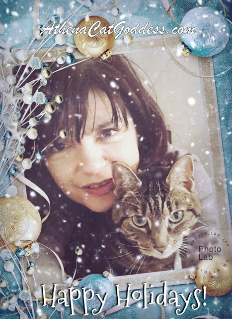 Caturday Art Christmas Selfies