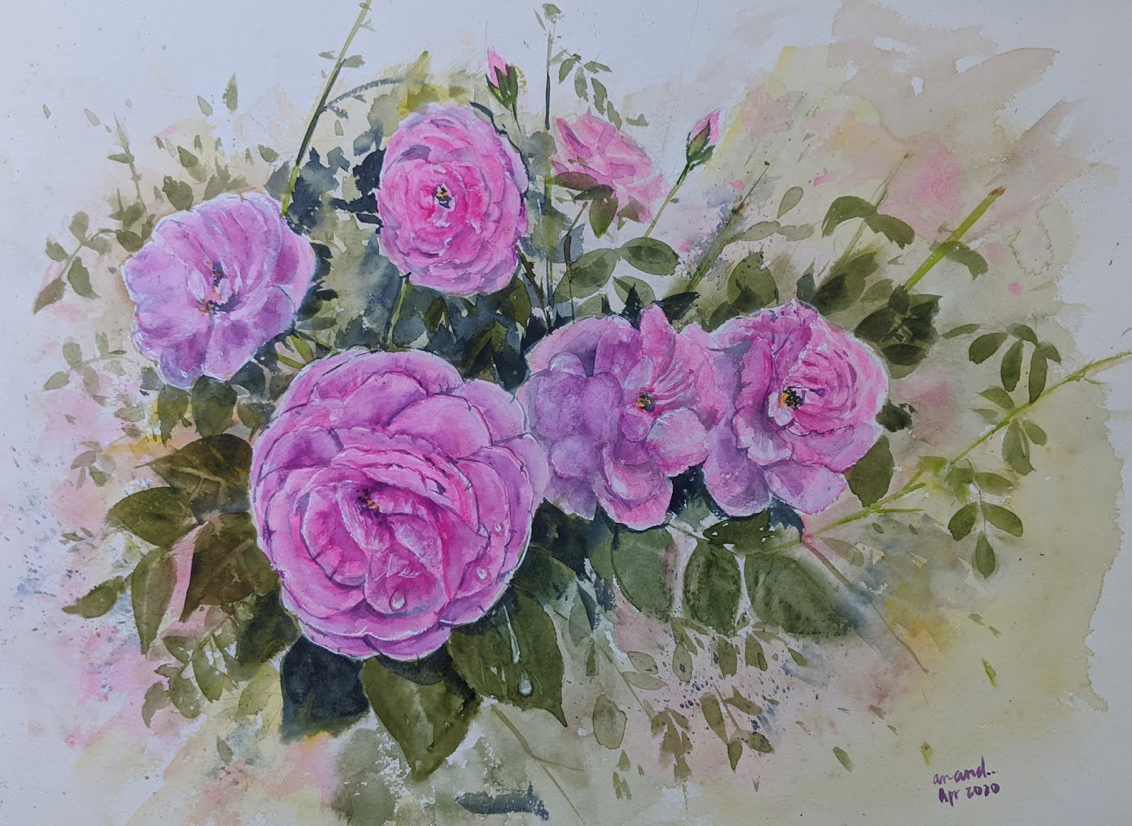 Rosy Day