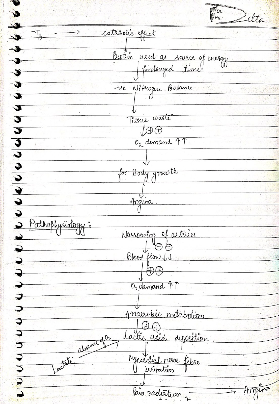 pathophysiology - angina pectoris thyroism