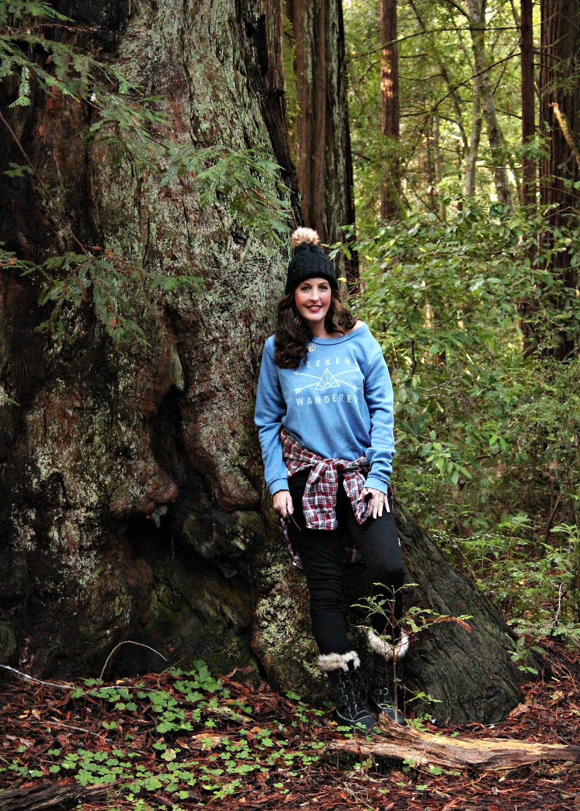Weekend Wanderer in the Redwoods