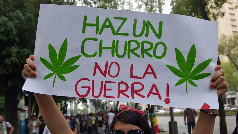 SCJN analizará cómo se podrá adquirir semillas de mariguana en México