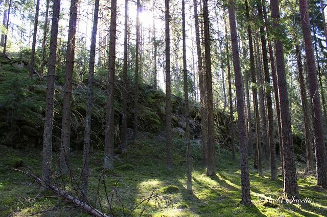 Kirstanvuori Ylämaalla