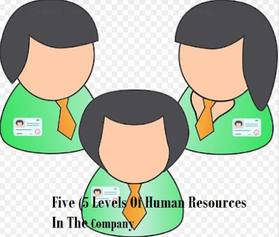5 Levels Of Human Resources At The Company