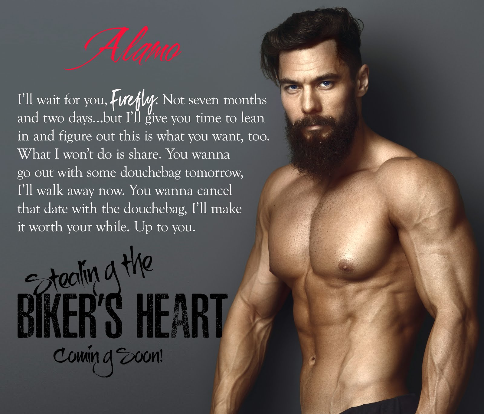 Stealing The Biker's Heart Release Blitz
