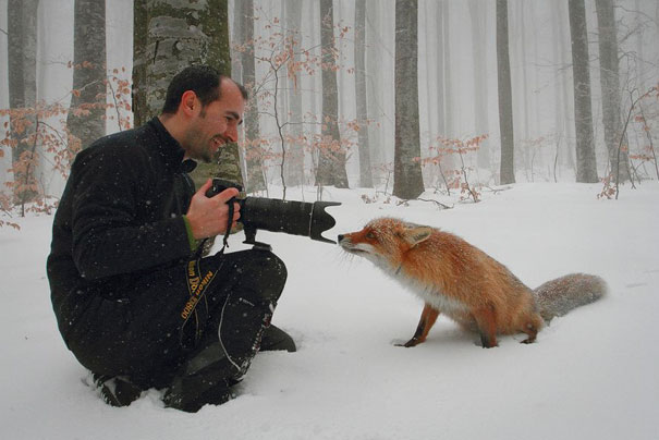 15+ Pics That Show Photography Is The Biggest Lie Ever - Fox Close Up