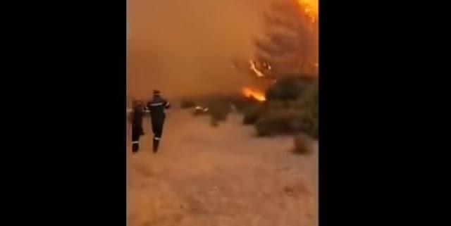 ΚΡΑΥΓΗ απεγνωσμένου πυροσβέστη στην Ρόδο...!!«Καίγονται ελάφια, είμαστε ένα όχημα...και 5 πυροσβέστες...!!Η μάχη είναι ΑΝΙΣΗ...!!Γίνεται κόλαση...!!Έχει εγκλωβισμένους μέσα στην φάρμα πυροσβέστες και εθελοντές»....!![ΒΙΝΤΕΟ]