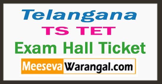 TS TET Hall Ticket 2017