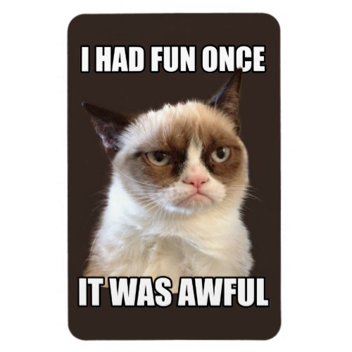 I Had Fun Once | The Grumpy Cat | Funny Magnet