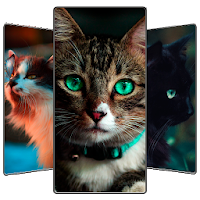 Cute Cat Wallpaper Apk Download for Android