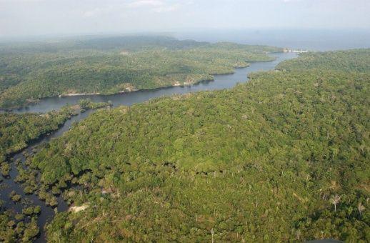 """Bolsonaro afirma que desea """"explotar"""" la Amazonía junto a EE.UU"""