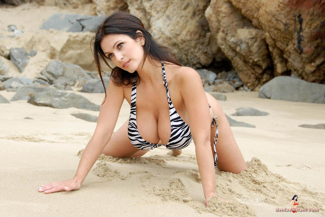 Denise Milani Beach Zebra HD Sexy Photoshoot Hot Photo 5