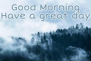 Gud Morning Beautiful Images