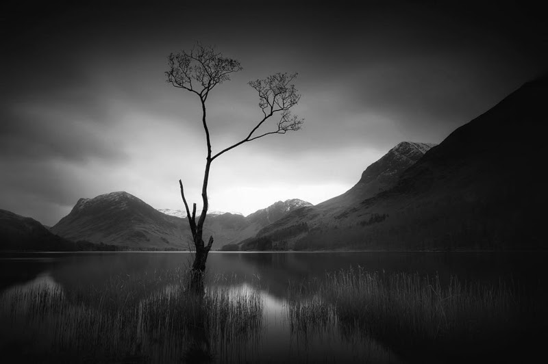 Beautiful black and white Photography by Noel Bodle from Kent England.